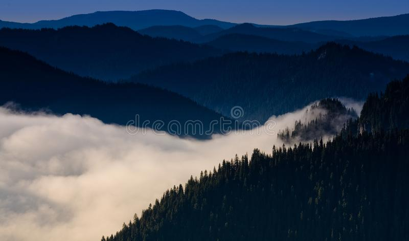 Mt. Rainier National Park, Washington State. A cloud reaches through the valley to touch the top of a mountain in Mt. Rainier National Park, Washington State royalty free stock photo