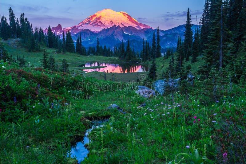 Mt. Rainier, Washington State royalty free stock images