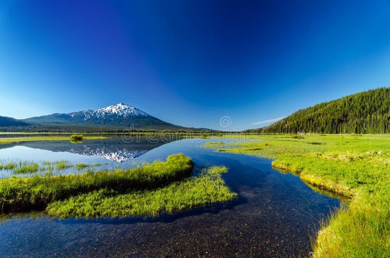 Mt. reflexión y bosque del soltero fotos de archivo