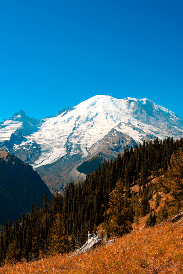 Mt. regenachtiger royalty-vrije stock afbeelding