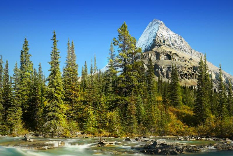Mt Robson - Wspina się Robson prowincjonału parka, Kanadyjskie Skaliste góry zdjęcie royalty free
