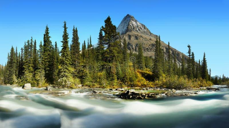 Mt Robson - Wspina się Robson prowincjonału parka, Kanadyjskie Skaliste góry fotografia royalty free