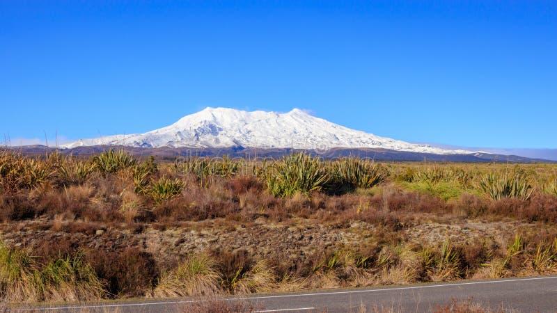 Mt Ruapehu i den Tongariro nationalparken som är nyazeeländsk arkivbilder