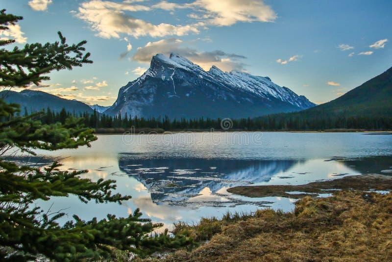 MT Rundle in het nationale park van Banff over Vermiljoenenmeren stock fotografie