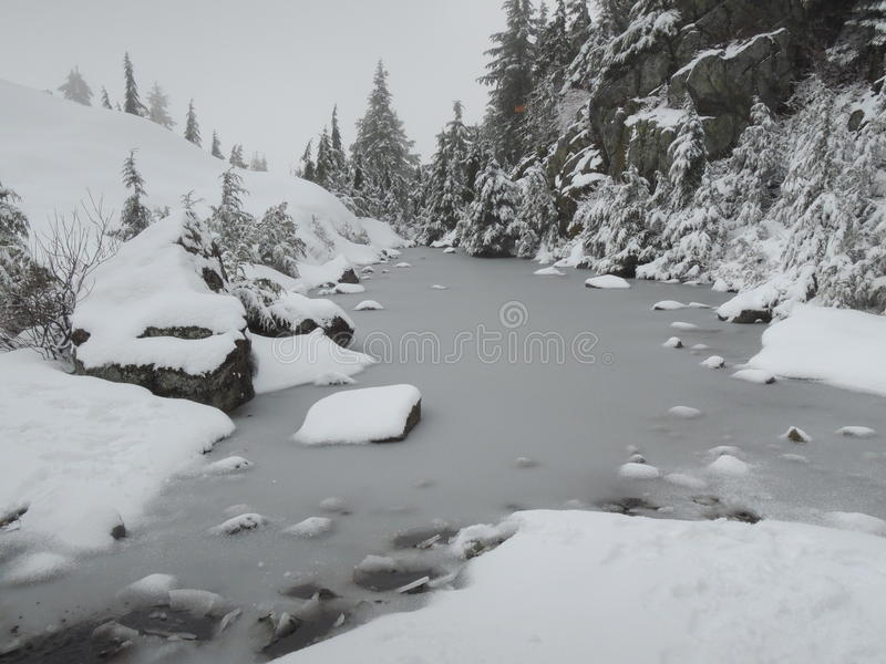 Mt Seymour stock photos