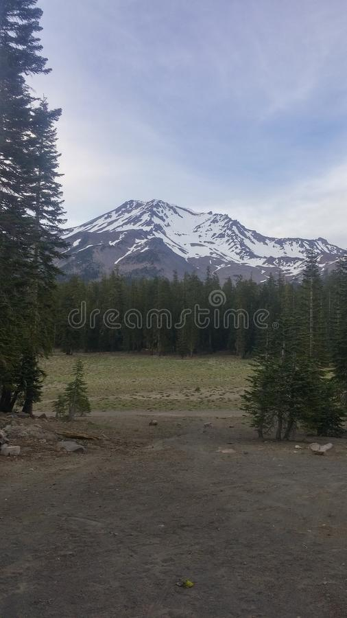 MT shasta stock foto