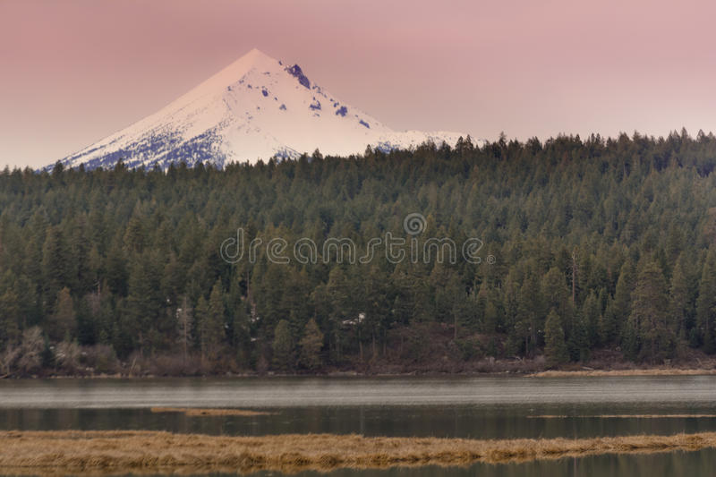 Mt Shasta stockfotos