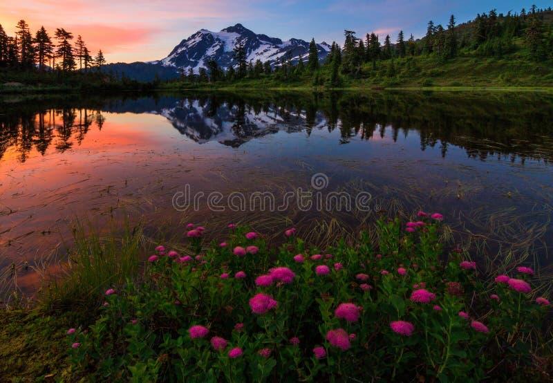 Mt Shuksan, озеро изображени, штат Вашингтон стоковые изображения rf