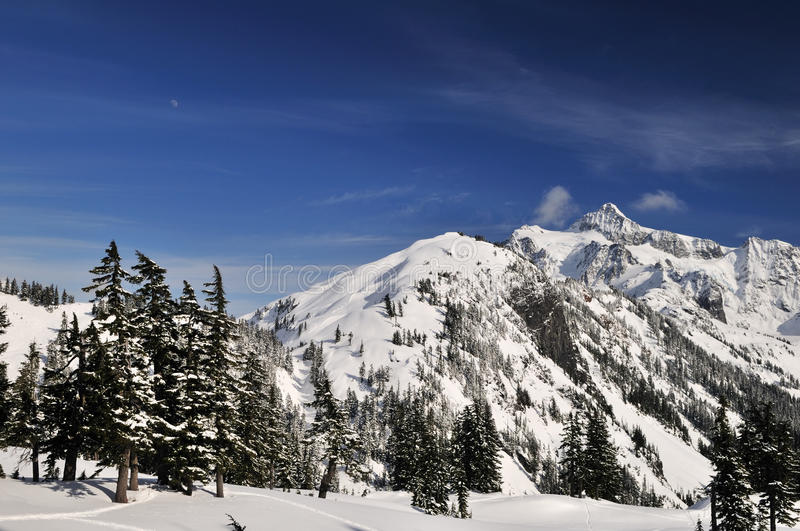Download Mt. Shuksan With Snow In Winter Stock Photo - Image: 12649876
