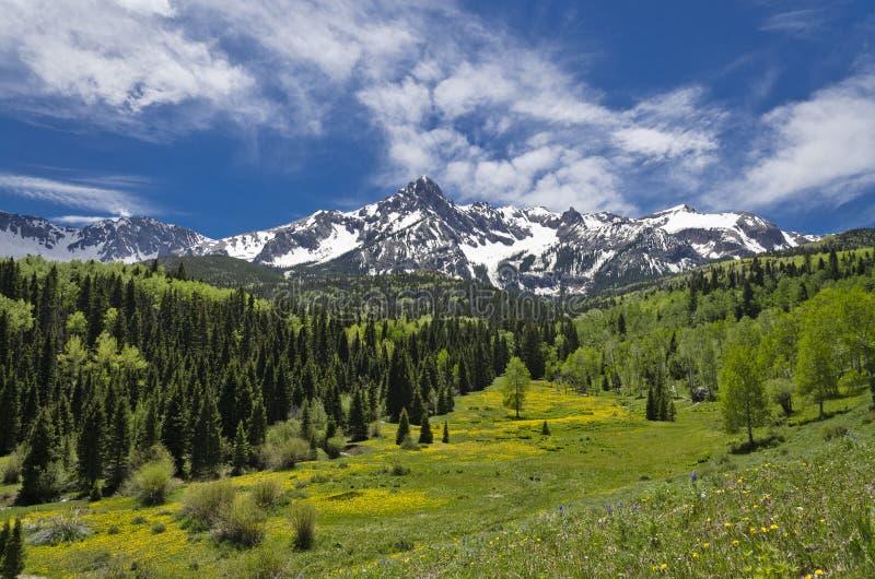 Mt. Sneffels in giugno immagini stock libere da diritti