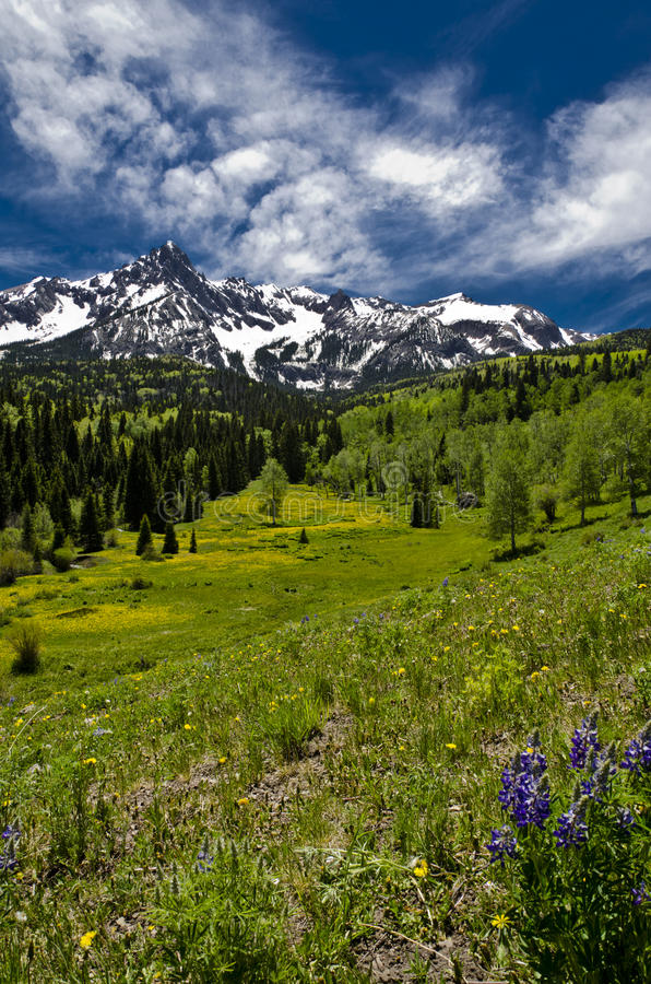 Mt. Sneffels in June #2 stock photos