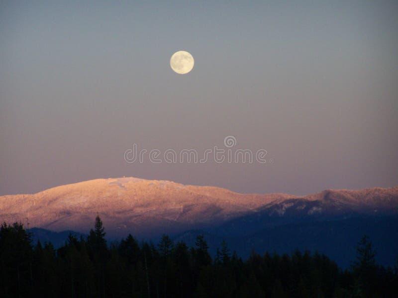MT spokane royalty-vrije stock foto's