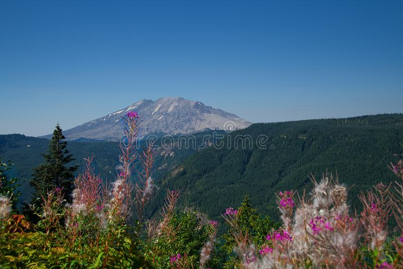 Mt St Helens 2273 stock photo