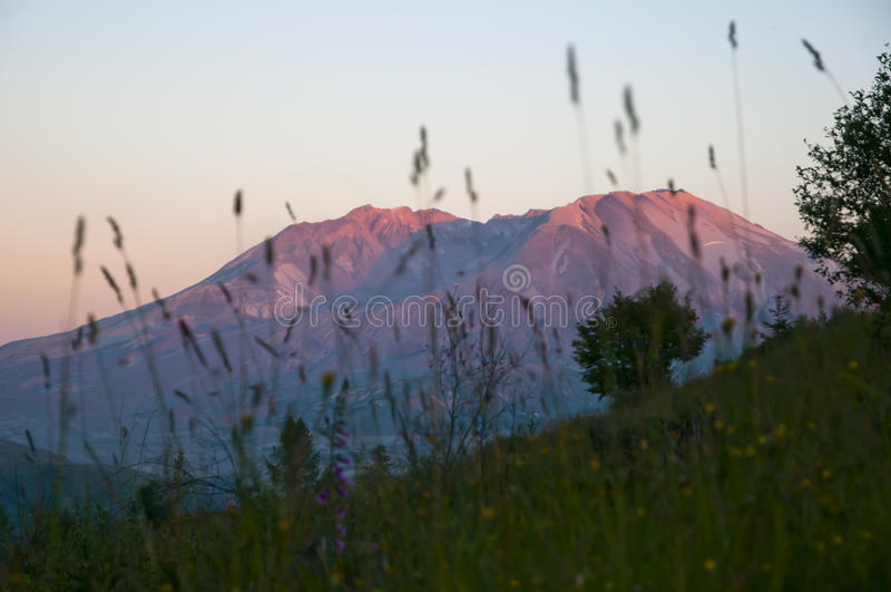 Download Mt St Helens at sunset stock image. Image of mountain - 29462245