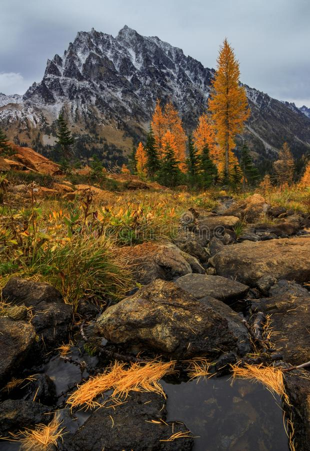 MT Stewart, Washington State stock fotografie