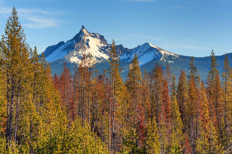 Mt. Thielsen part of the Cascade Range royalty free stock images