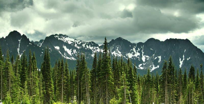 Mt. Un parque nacional más lluvioso foto de archivo libre de regalías