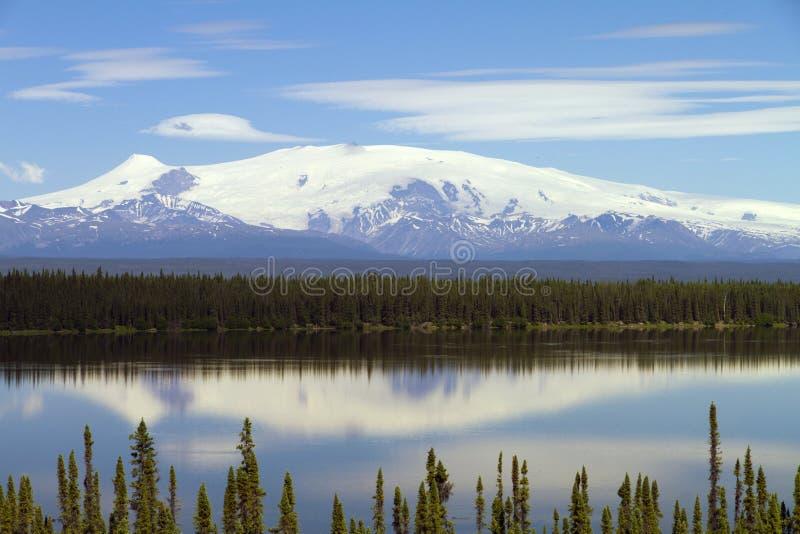 Mt Wrangell royaltyfria bilder