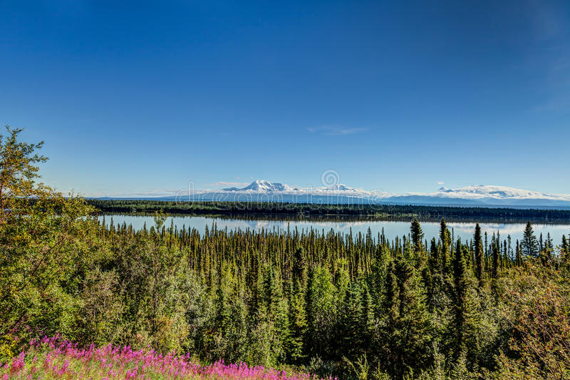 Mt. Wrangell stock photography