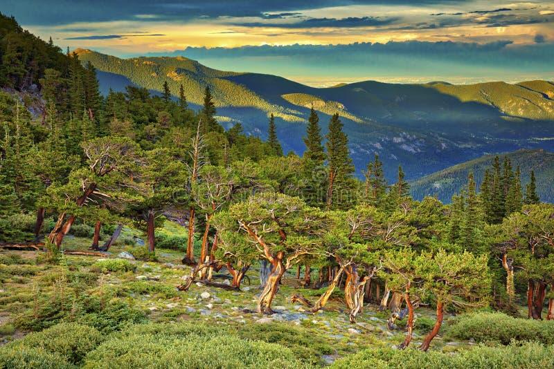 Mt wyparowywa zdjęcie stock