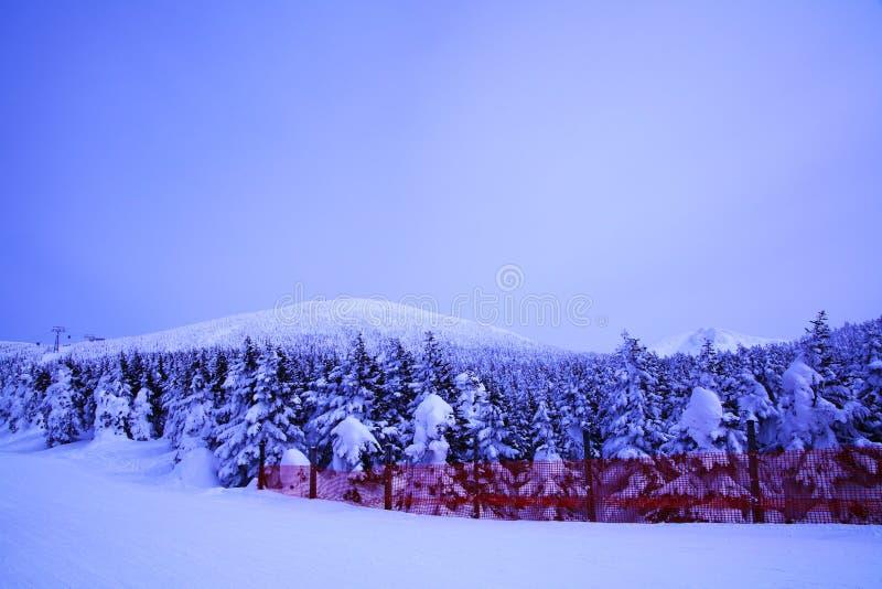Mt.Zao skitoevlucht in Japan royalty-vrije stock afbeelding