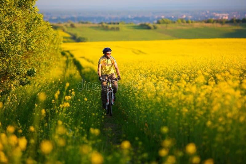 Mtb骑自行车的人循环 库存图片