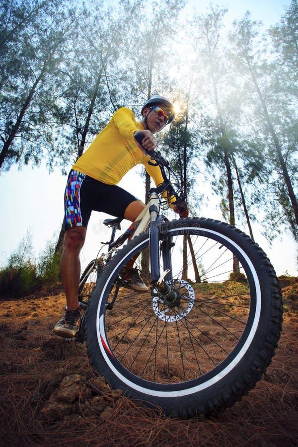 Mtb de vélo de montagne d'équitation de jeune homme dans l'utilisation de voie de jungle pour le sport photo stock