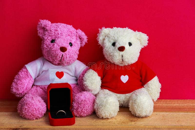 Muñecas del oso con el anillo de bodas imagen de archivo libre de regalías