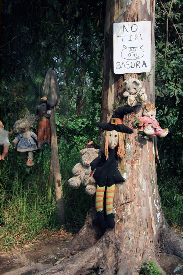 Muñecas fantasmagóricas viejas que cuelgan en un árbol en Ciudad de México imágenes de archivo libres de regalías