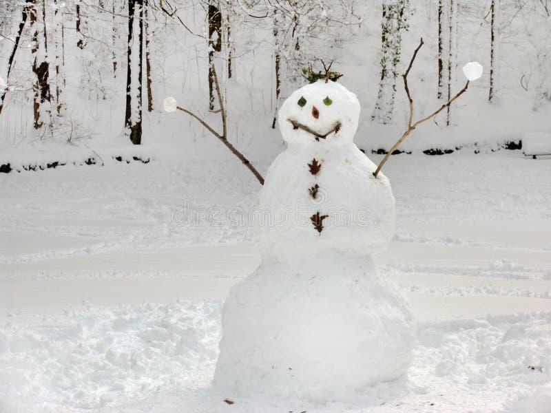 Muñeco de nieve cómodo imagenes de archivo