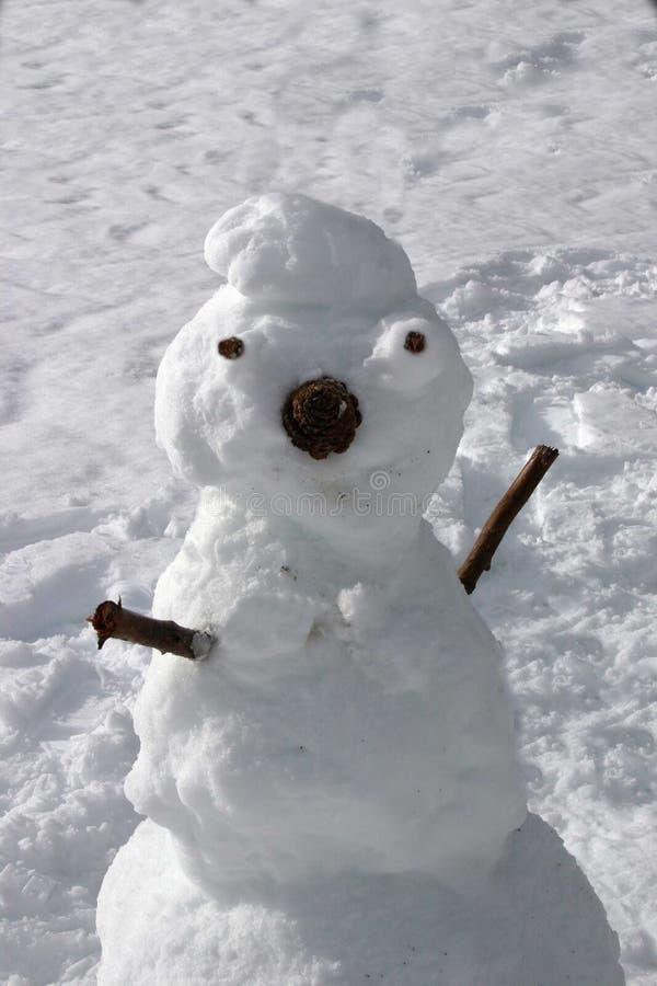Muñeco de nieve del invierno imagen de archivo libre de regalías