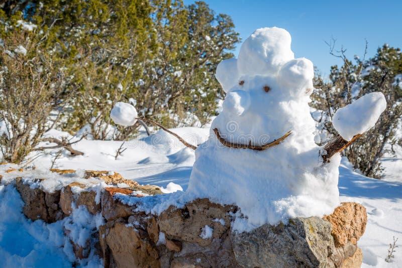 Muñeco de nieve en Arizona Mountians imagen de archivo