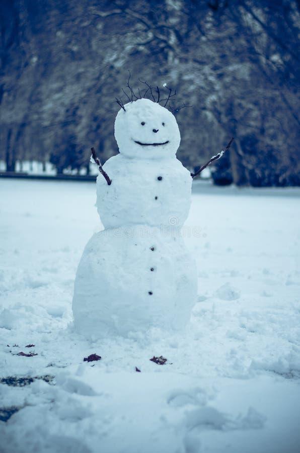Muñeco de nieve en parque del invierno imágenes de archivo libres de regalías