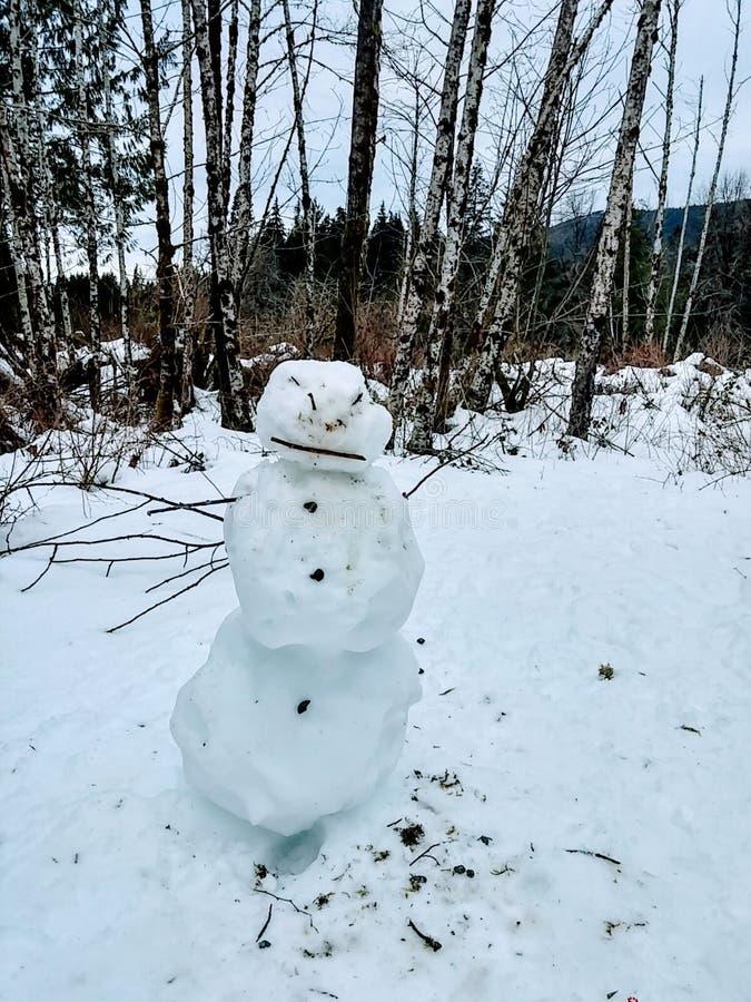 Muñeco de nieve enojado 1 foto de archivo libre de regalías