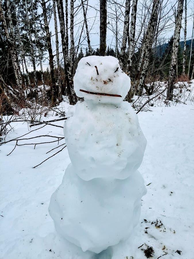 Muñeco de nieve enojado 2 fotos de archivo libres de regalías