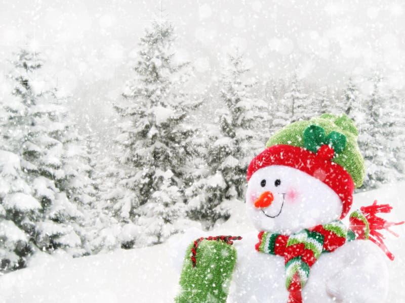 Muñeco de nieve feliz en paisaje del invierno fotografía de archivo