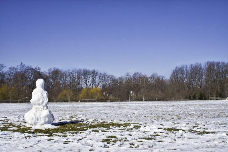 Muñeco de nieve solitario en primavera imagen de archivo libre de regalías