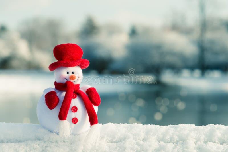Muñeco de nieve y paisaje del invierno foto de archivo libre de regalías