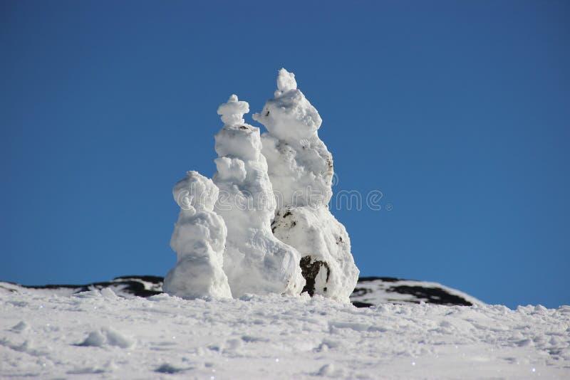 Muñecos de nieve obrazy stock