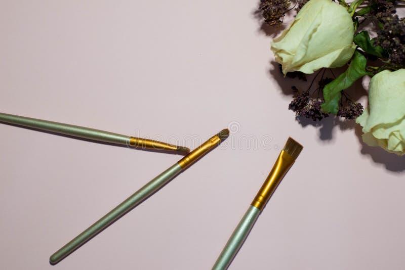 Muśnięcia dla makeup na różowym tle zdjęcie royalty free