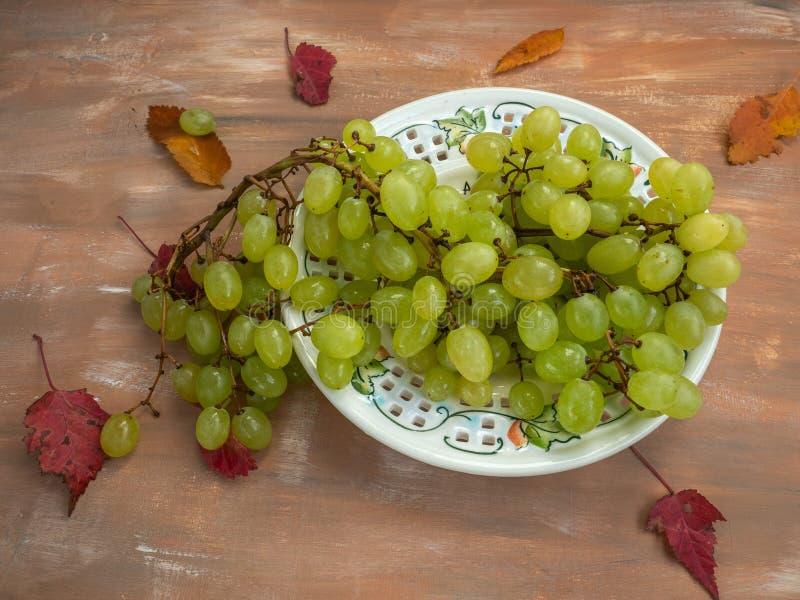 Muśnięcie zieleni winogrona na dekoracyjnym talerzu z jesień liśćmi rozpraszającymi, zdjęcia stock