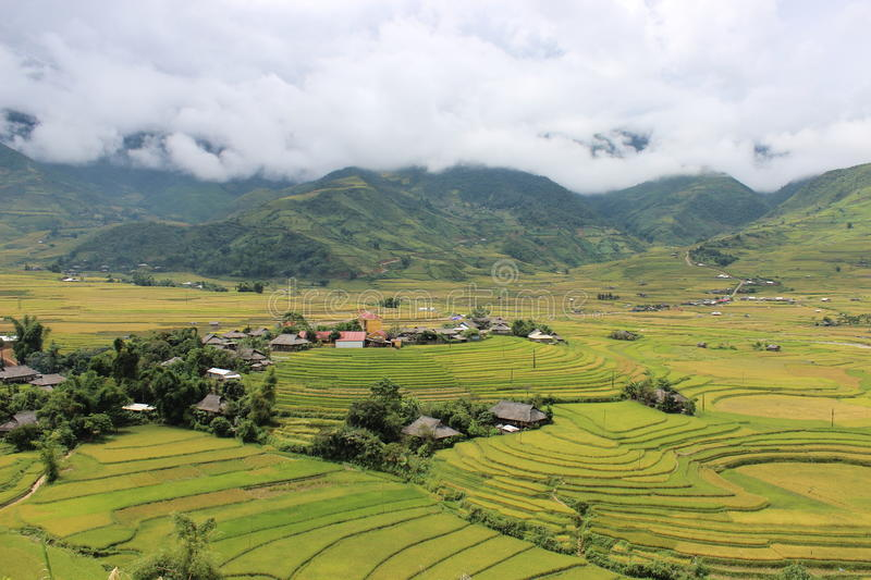 MU Cang Chai Rice Terrace Fields stockfoto