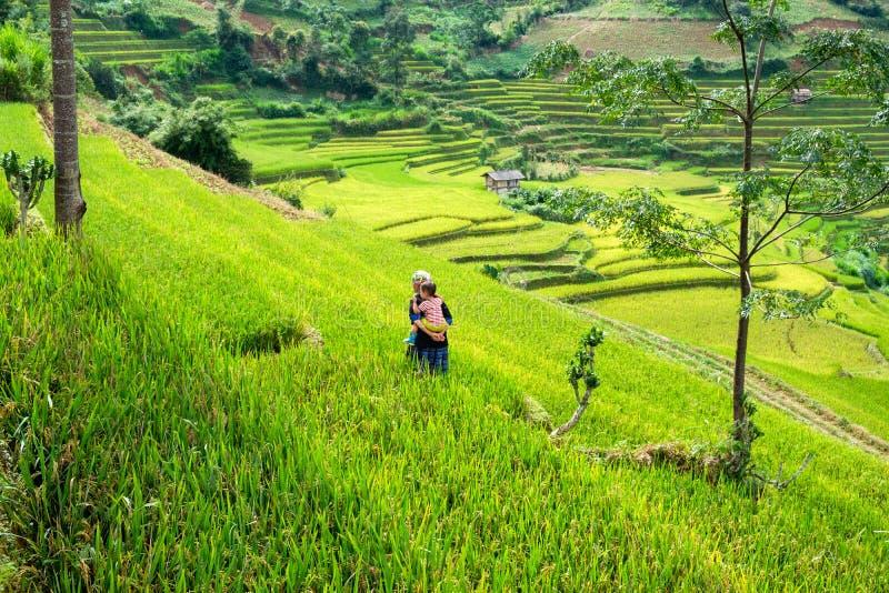 Mu Cang Chai, Vietnam - September 07 2017: Bärande sonson för farmor som går i den gröna risfältet som terrasseras på dalen arkivfoto