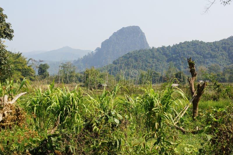 Muang Ngoi, Laos, Azië royalty-vrije stock afbeeldingen