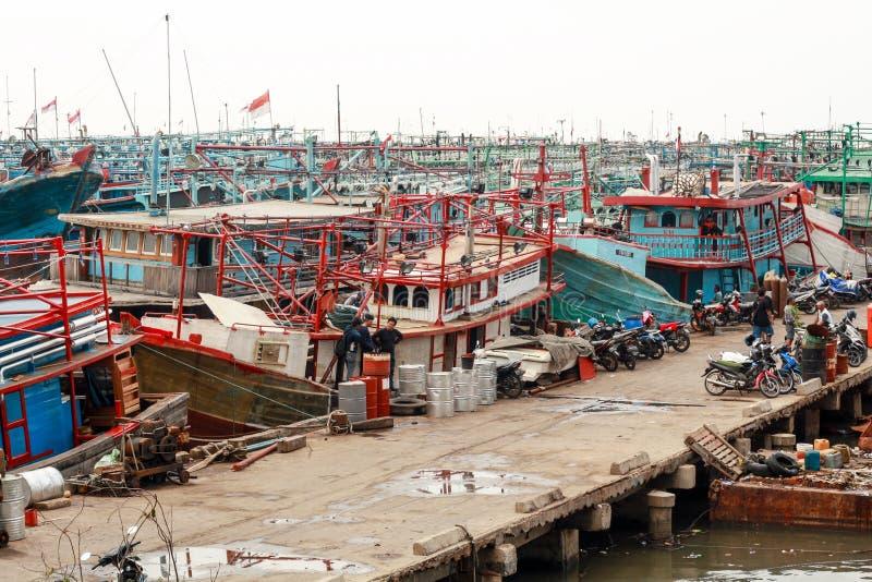 Muara Angke port royaltyfria foton