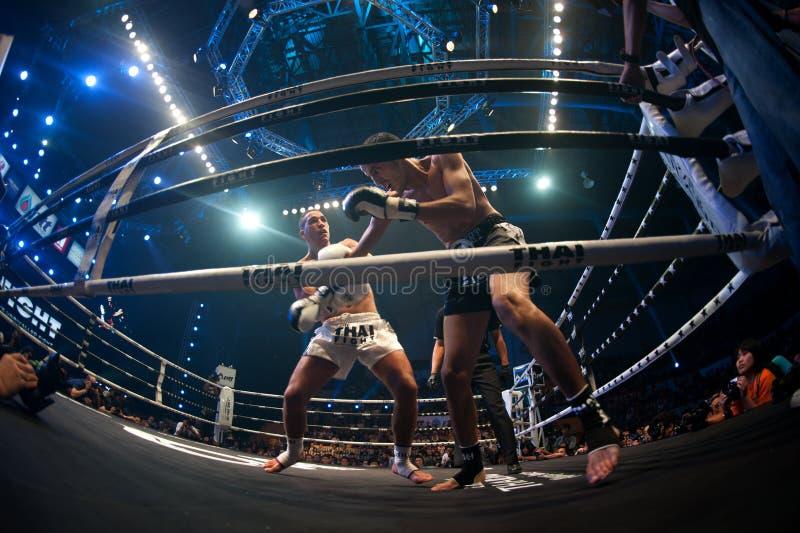 Muay Thai royalty-vrije stock foto