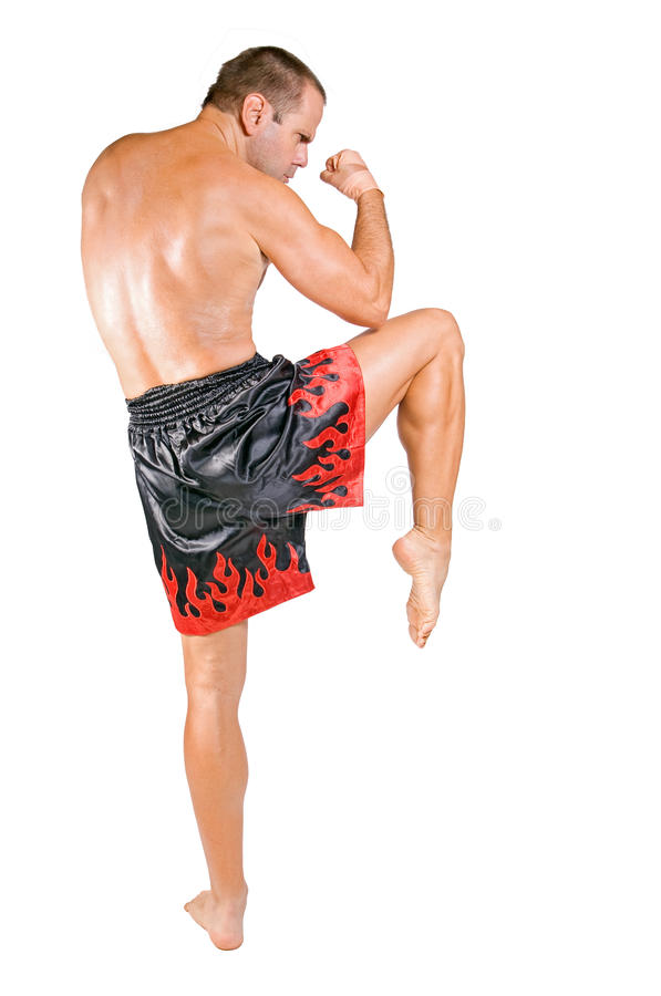 Muay Thai fighter. Pose on white background royalty free stock image
