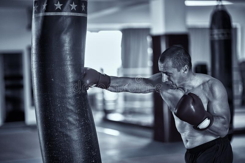 Muay thai fighter working with heavy bag. Muay thai fighter hitting the heavy bag in the gym stock image