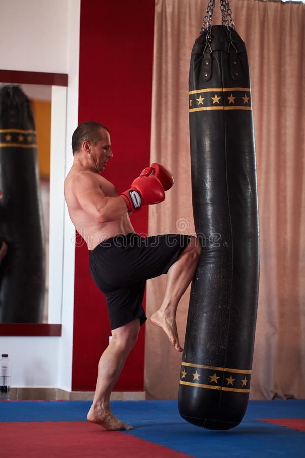 Muay thai fighter working with heavy bag. Muay thai fighter hitting the heavy bag in the gym royalty free stock image
