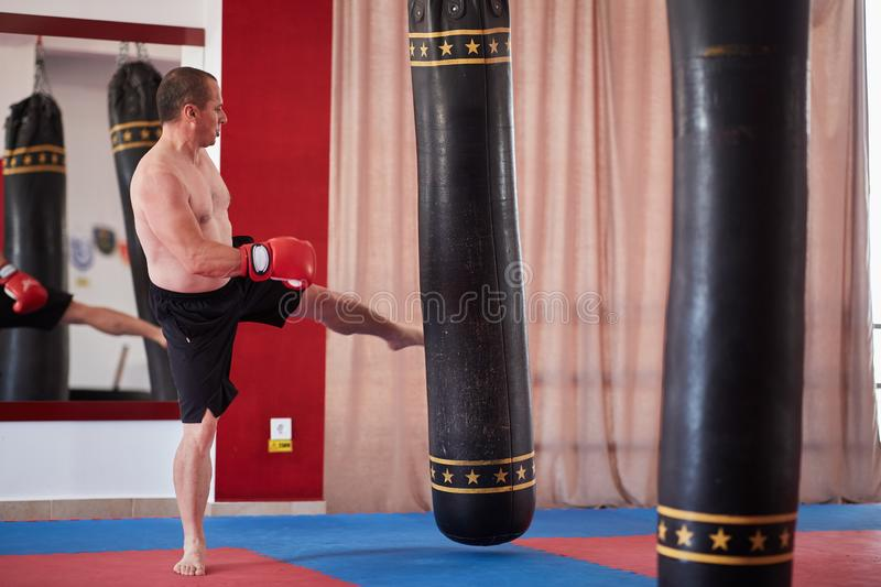Muay thai fighter working with heavy bag. Muay thai fighter hitting the heavy bag in the gym royalty free stock photography